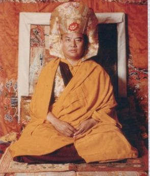 His Holiness the 16th Karmapa